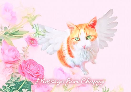 天使画像サンプルA